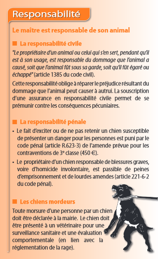 responsable lille amendes