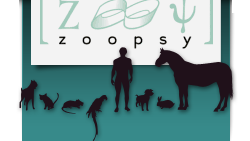 Zoopsy vétérinaires comportementaliste